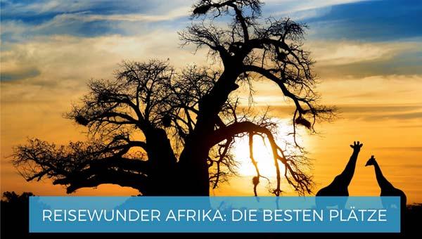Reisewunder Afrika die besten Plätze